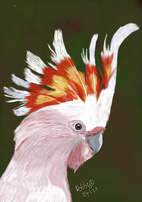 Inkakakadu